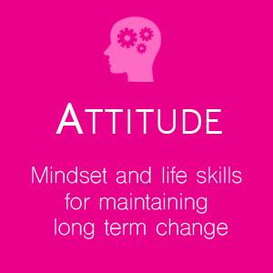 attitude-box